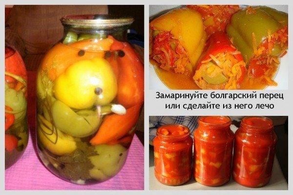 как заготовить болгарский перец на зиму