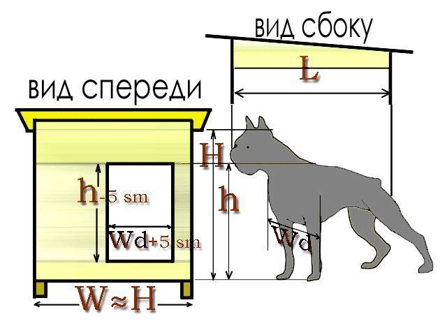 Размеры вольеров для собак своими руками