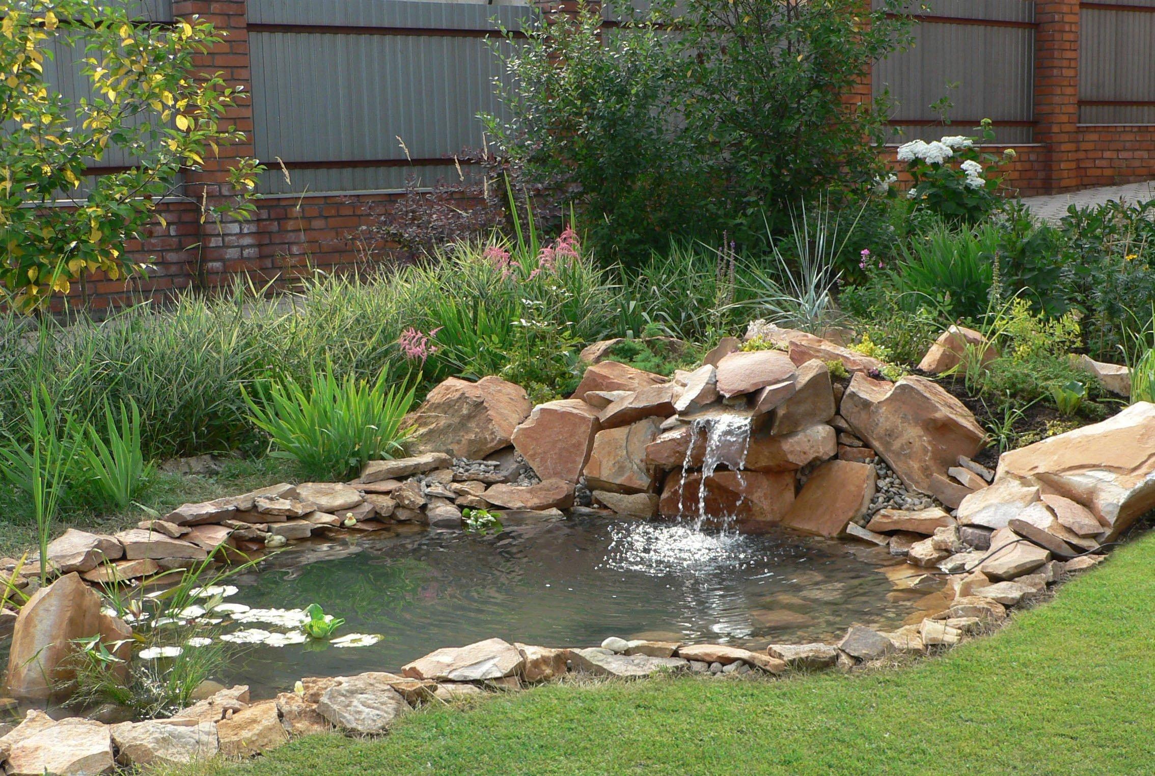 Искусственный пруд в саду своими руками фото