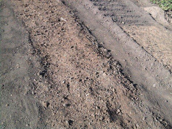 воздействие золы на почву