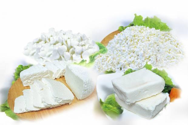 рецепт приготовления творога в домашних условиях из козьего молока