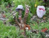 Как украсить сад своими руками — оригинальные дорожки