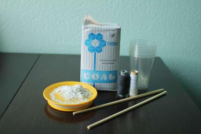Выращивание кристалл из соли в домашних условиях