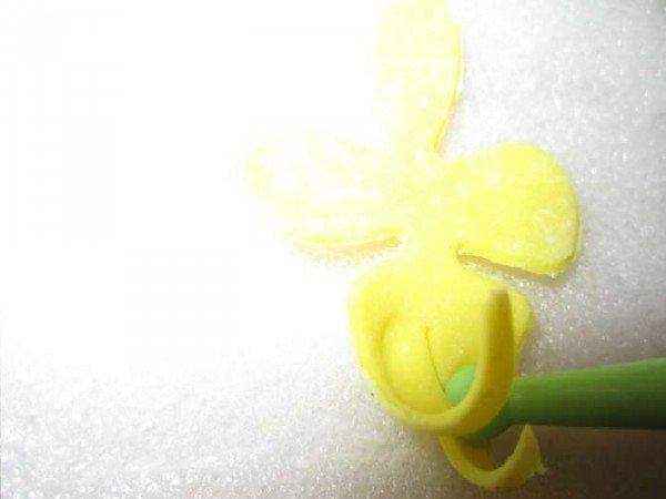 серединка орхидеи с разрезанным хвостиком
