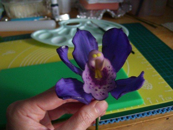 орхидея в собранном виде