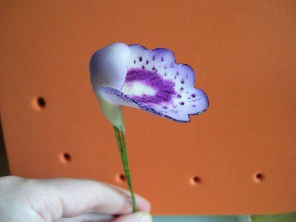 раскрашенная сердцевина орхидеи