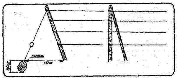Одноплоскостная шпалера схема