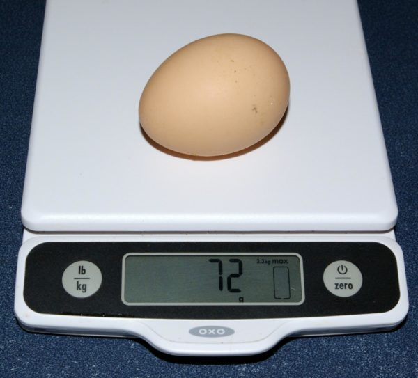 Куриное яйцо на электронных весах