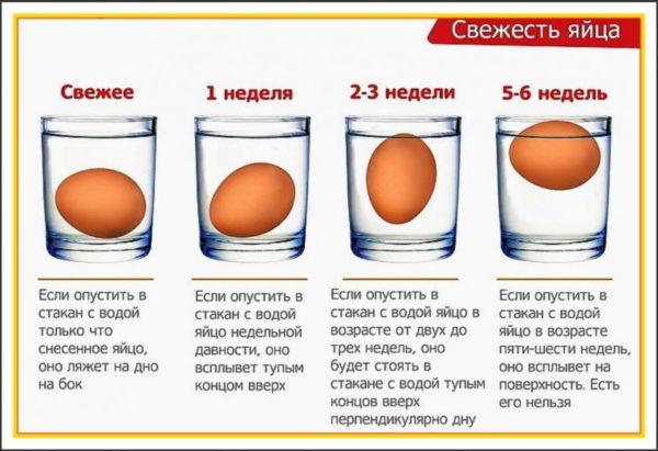 Схема определения свежести яйца при помощи воды