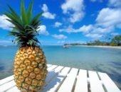 ананас лежит