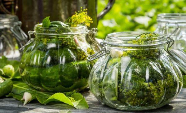 Хранение урожая методом консервации