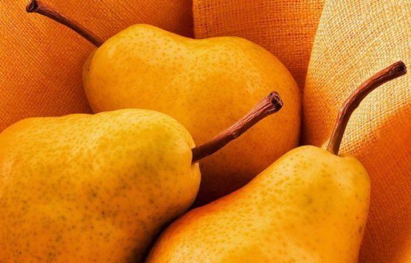 Плоды Медовой груши