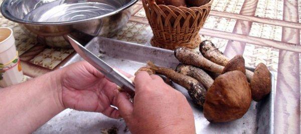 Чистка грибов в домашних условиях