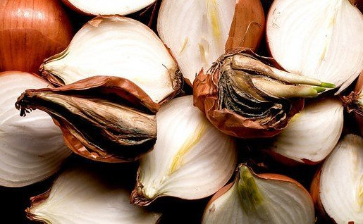 Гнилые луковицы