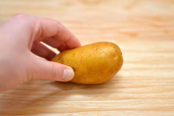 клубень картофеля, расположенный параллельно краю столешницы