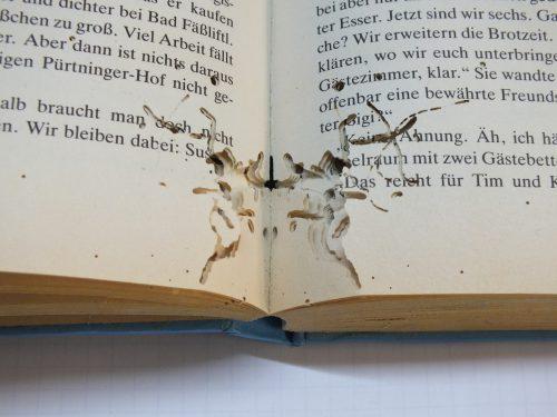 книга, испорченная чешуйницами