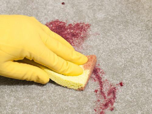 На светлом ковре оттирают пятно от красной краски