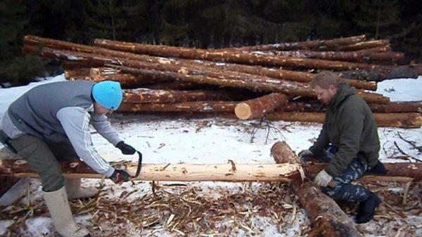 Снятие древесной коры