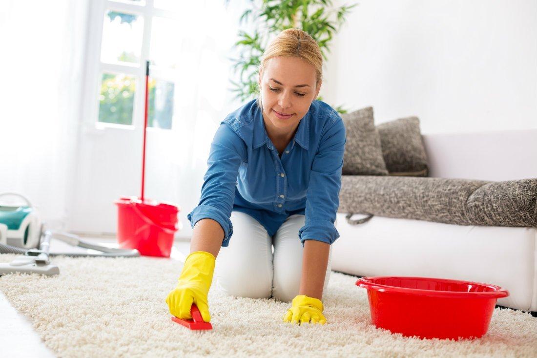 Чем и как избавиться от земляных блох в доме быстро в домашних условиях: полезные советы для борьбы с кусачими паразитами