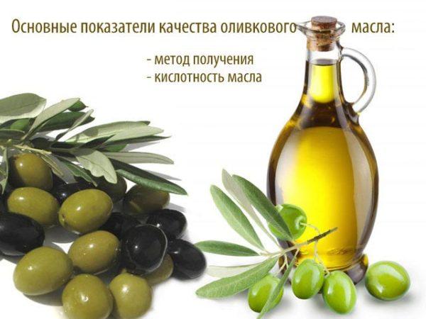 Критерии качества оливкового масла