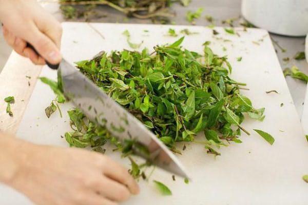 Подготовка растений с резкими запахами для обработки животных от блох