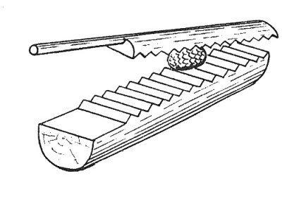 «Тёрка» для чистки кедровых шишек