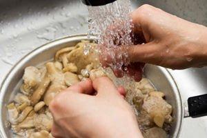 Промывание грибов перед варкой