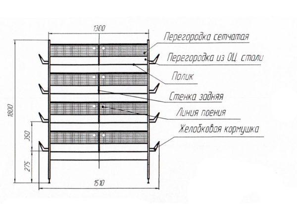 Схема клеточной батареи для перепелов