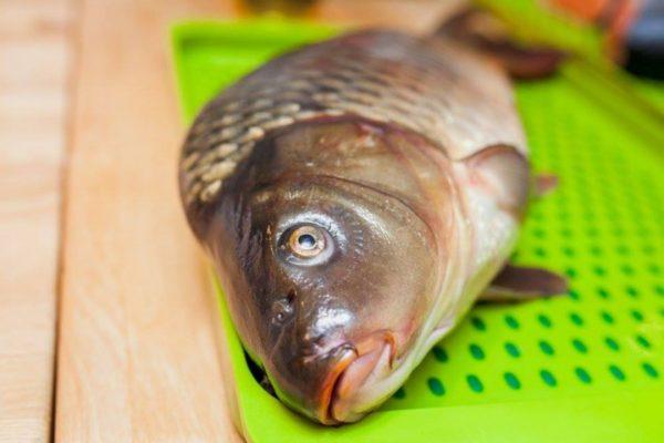 Размороженная рыба