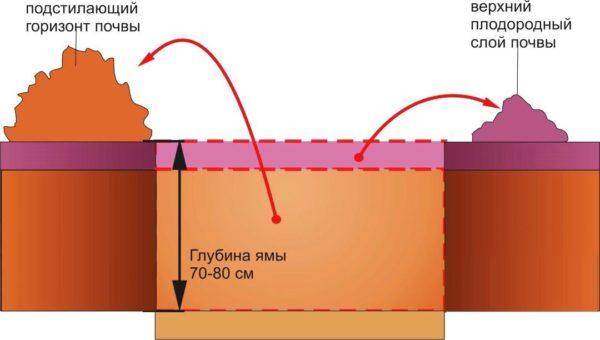 Схема подготовки ямы
