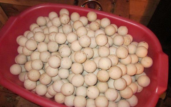 Фарфоровые шарики