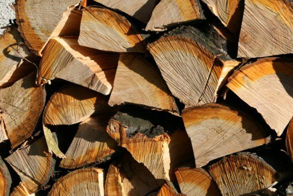 Ивовые дрова
