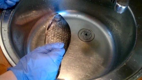 Чистка рыбы в раковине в перчатках