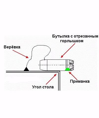 Схема крысоловки из бутылки
