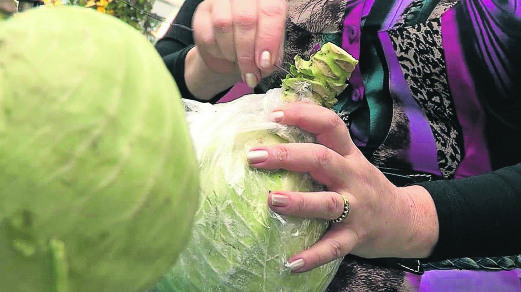 Как хранить капусту зимой в домашних условиях