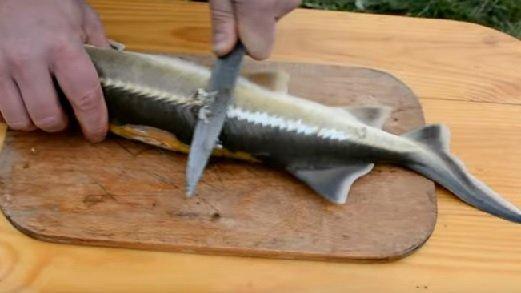 На доске ножом снимают чешую со стерляди