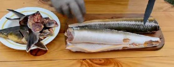 Рыба с удалёнными плавниками и отрезанной головой