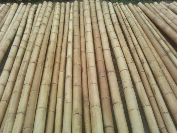 Бамбуковые заготовки