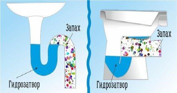 Правильный и нарушенный гидрозатвор в трубе