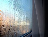 грибок на окнах