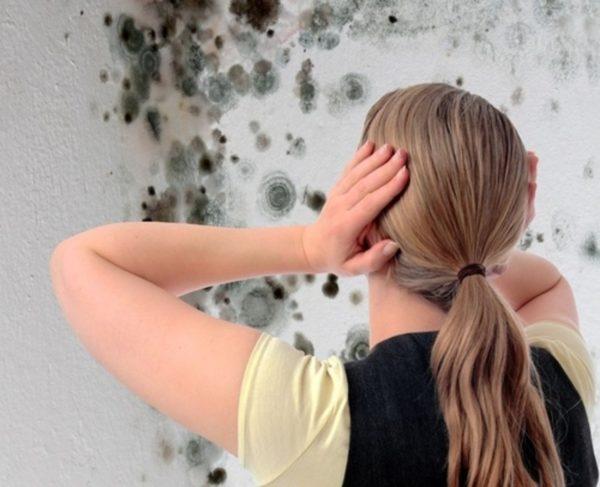 Женщина, держащаяся за голову при виде грибка на стенах