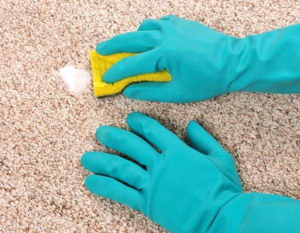 Чистят ковёр губкой
