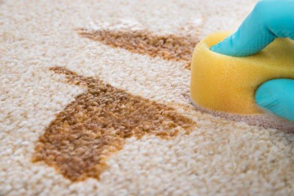 Чистят пятна на ковре губкой