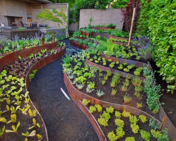 Огород, разделённый на зоны с помощью ограждений