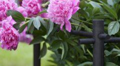 Ограждение для цветов