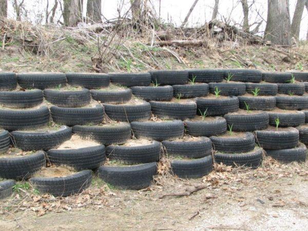 Забор из шин