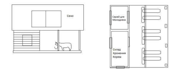 Схема коровника на 6 скотомест