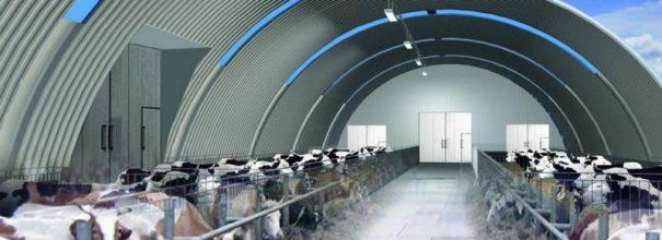 Строительство коровников из металлоконструкций по технологиям быстровозводимых бескаркасных и каркасных ангаров.