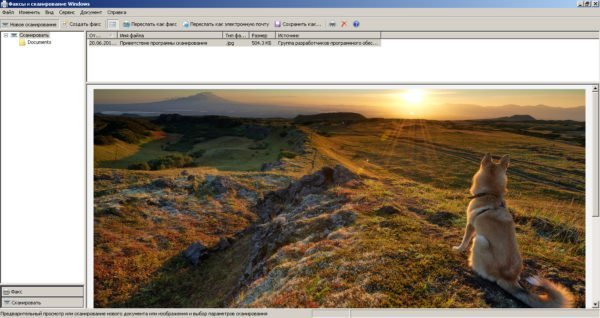 Запуск процесса сканирования из стандартной программы Windows