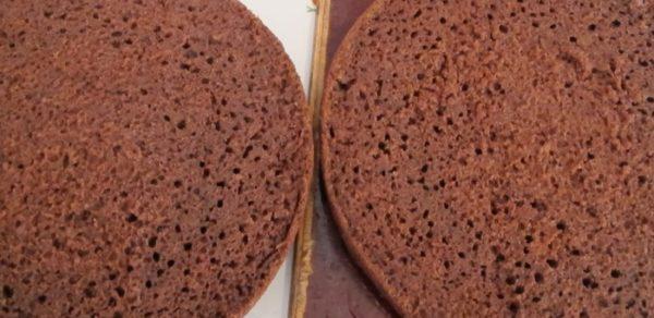 Два коржа для шоколадного пирога